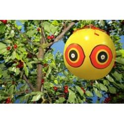 Ala Stop BALLON pallone 40 cm Spaventapasseri Dissuasore scaccia uccelli